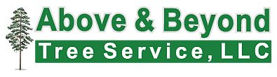 ABOVE & BEYOND - TREE SERVICE, RI